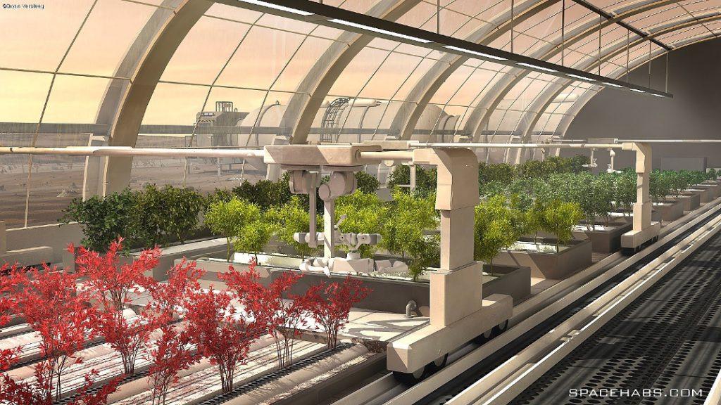 mars-greenhouse1